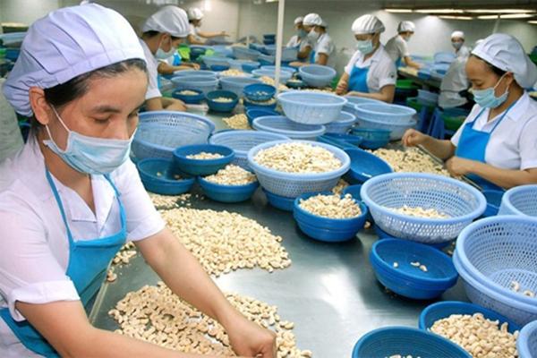 Công ty TNHH Chế biến điều xuất khẩu Lâm Đồng